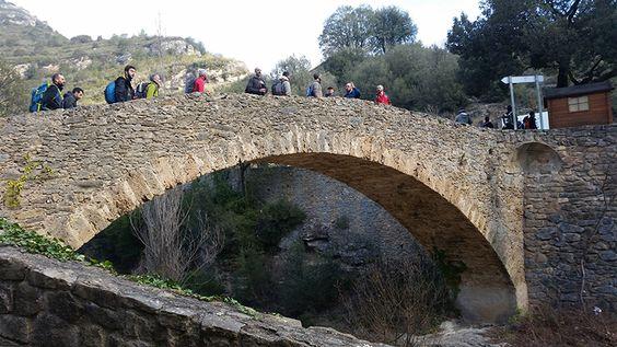 Los Riscos de Bertí son un conjunto de riscos y relieves que forman parte de la Cordillera Prelitoral de la comunidad autónoma de Cataluña