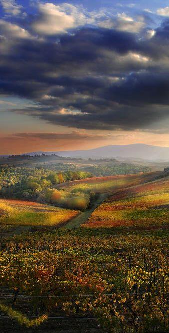 Кианти, Италия Сиена Тоскана: