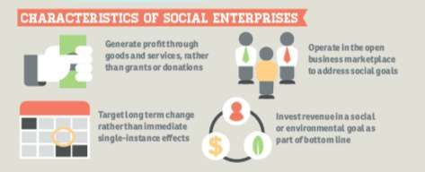 Social Entrepreneur Infographics   Infographics, Trends and