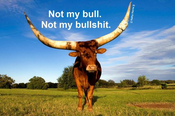 Not My Bull. Not My Bullshit. (Texas version of the Polish proverb about the monkeys and circus) - kathylynnharris.com