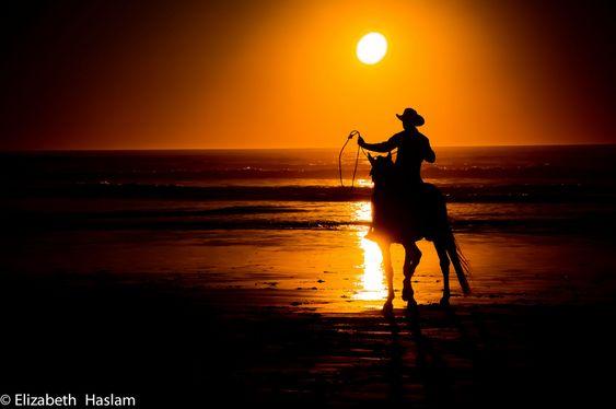 A la caza del sol (Elizabeth Haslam)