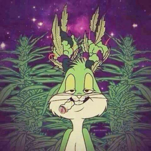 Pin On Fumando Marihuana