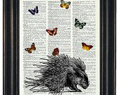 BOGO SALE Hedgehog Dictionary Art Print with HHP Signature Butterflies Wall Decor Dictionary Print Book Page Print Dictionary Prints