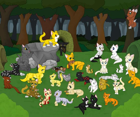 Day In Thunderclan Camp By