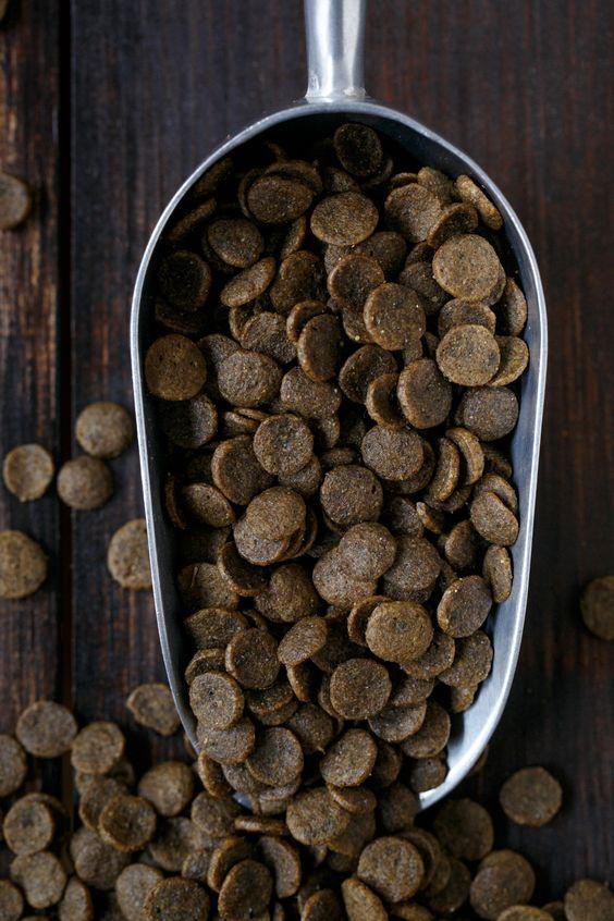 Buy All Natural #Dog #Food #Online #Edmond