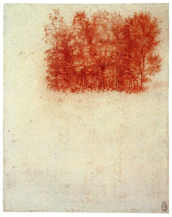 "honeymuse: "" Leonardo da Vinci A Copse of Trees, 1508 red chalk on paper height: 191 mm / width: 153 mm Such simple natural drawings by Leonardo da Vinci…they remind me of the way a Wordsworth poem..."