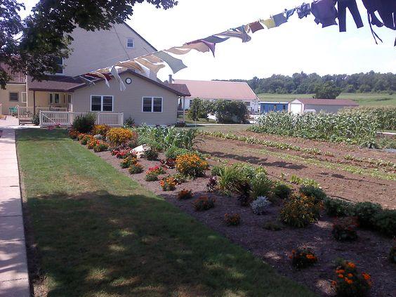 Dan & Rachel Algyer's - Kinzer,  Kinzers, PA - Southern Lancaster County - August, 2011