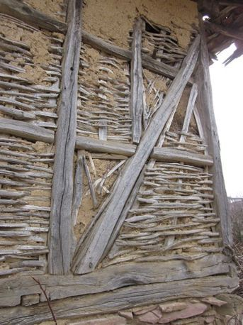 Young hazelnut tree branches have been used for wattle & daub house construction