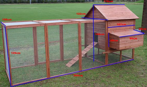 wooden coop with run dimensions
