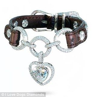 Pampering at a price: Every collar is custom made and encrusted with hundreds of diamonds