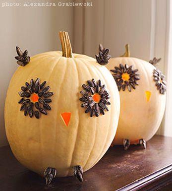 love this! cute owl pumpkin for decor: Decorating Idea, Pumpkin Idea, Halloween Idea, Halloween Pumpkin, Pumpkin Owl, Owl Pumpkin