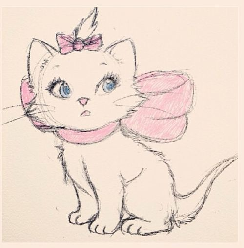 cat - drawing: