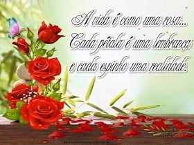 SENTIMENTO EM POESIAS: A vida é como uma rosa...