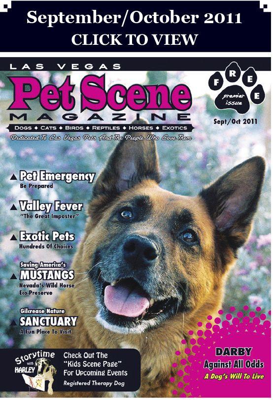 Las Vegas Pet Scene Magazine Sept Oct Issue Las Vegas Scene Pets