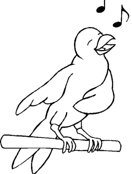 Sing Cheerfully Birds Coloring Pages Animal Coloring Pages Bird Coloring Pages Coloring Pages
