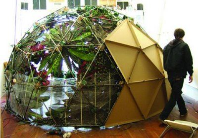plant geodome
