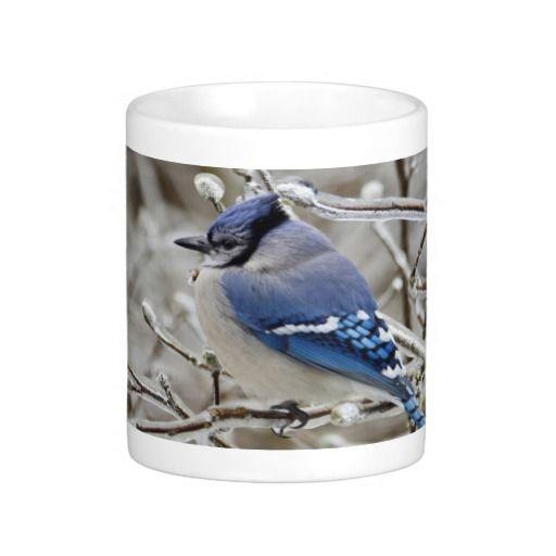 Winter Blue Jay Mugs