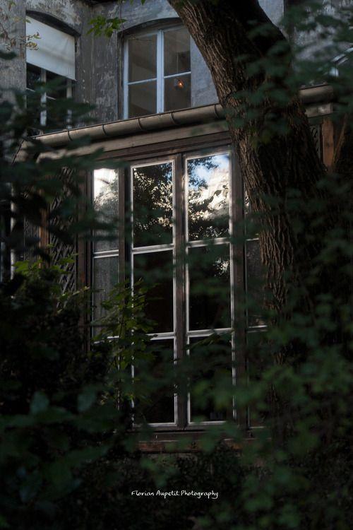 florian-aupetit:- Une belle matinée au jardin des plantes - Paris, France. by Florian Aupetit