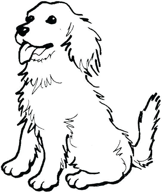 Golden Retriever Coloring Pages Best Coloring Pages For Kids Puppy Coloring Pages Dog Coloring Page Dog Coloring Book