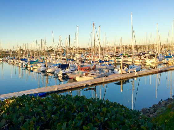 Harbor Island in February, San Diego, California