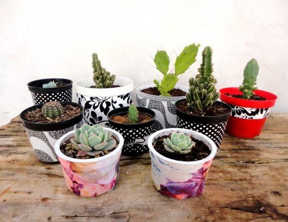 como-decorar-customizar-vasos-pequenos-cactos-cactus-suculentas