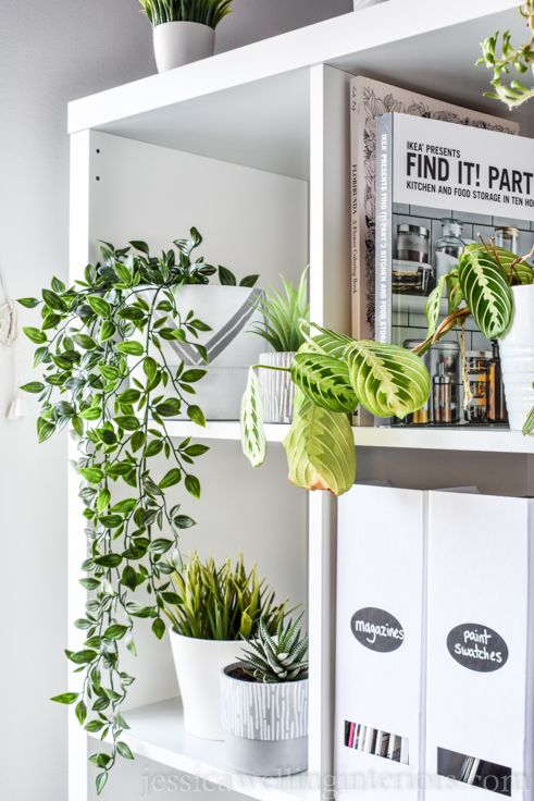 Modern Houseplants Are A Must Have For All Your Interior Spaces Let S Talk Pots And Planters Windows Book Indoor Plants Fake Plants Decor House Plants Decor