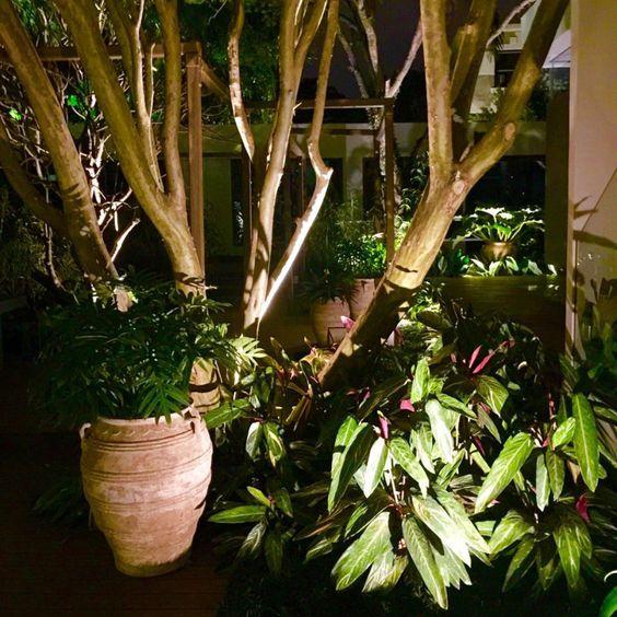Light In Garden iluminacao paisagistica 8