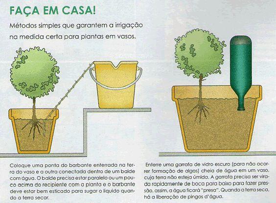 Irrigação de vasos: