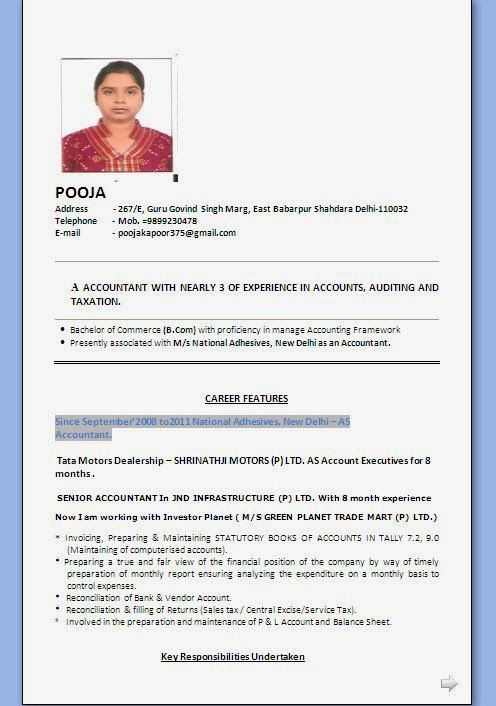 curriculum vitae online pdf Sample Template Example ofExcellent - monthly report format