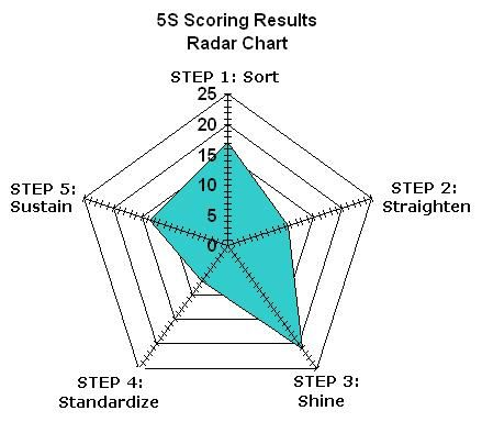 Sample 5S Radar Chart for displaying results Lean Six Sigma Bord - spider diagram template