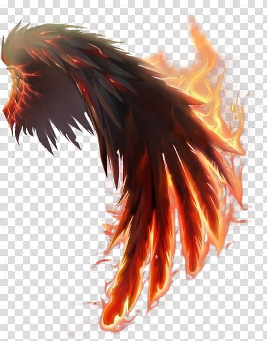 Flaming Wing Illustration Wings Of Fire Computer Icons Wings Transparent Background Png Clipart Gambar Tengkorak Cara Menggambar Karya Seni Fantasi