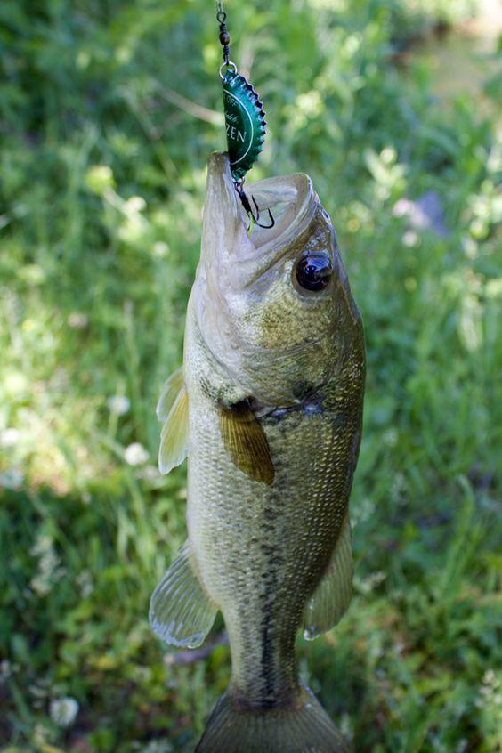 Baby bass bottle cap fishing lure go kayak kayaking for Baby bass fish