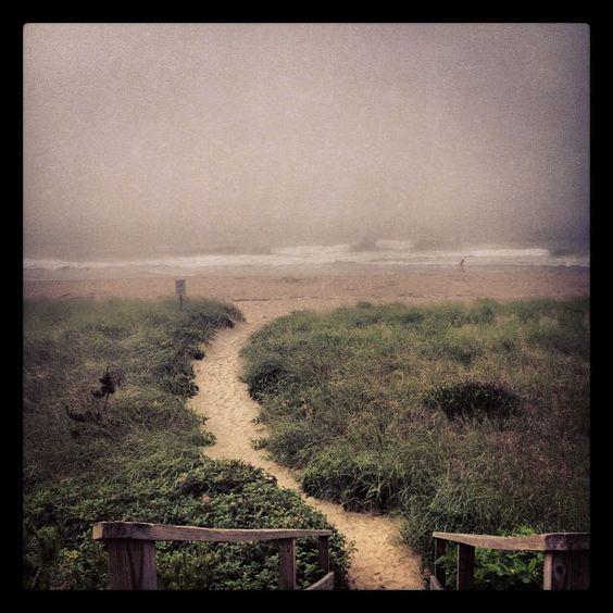 Foggy beach, Nantucket