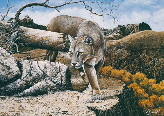 Jorge Rajadell  - Artista Argentino -