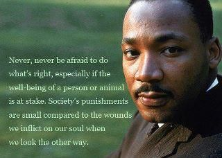 Do not look away ~ Martin Luther King, Jr.