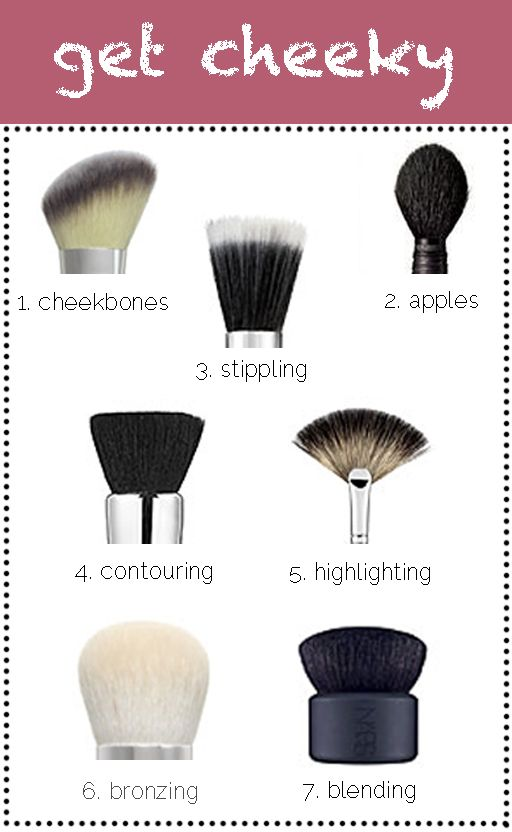 Cheekbones (powder blush): Look for natural hair bristles and an angled tip to perfectly sculpt and shape cheekbones. To find where yours are, look in the mirror and suck in your cheeks, then work the brush directly on them using short strokes as you make your way across towards your ears.  Apples (powder blush): Look for natural bristles and a plump body with a pointed tip for the best precision when applying blush to the apples of your cheeks. To find where yours are, look in the mirror…