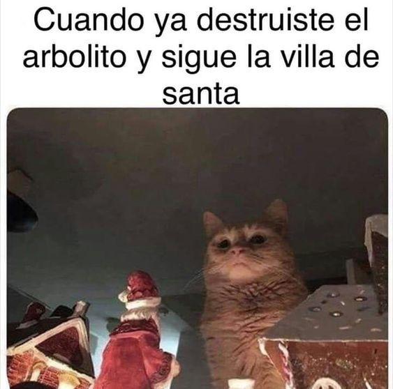 Memes De Gatos Vs La Navidad Memes En Espanol La Mejor Recopilacion De Memes Lo Mas Viral De Internet Memes Meme Gato Memes Divertidos