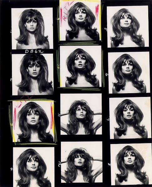 Avedon contact sheets for The Shrimp: