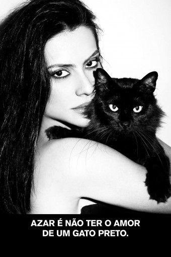 Azar é não ter o amor de um gato preto.