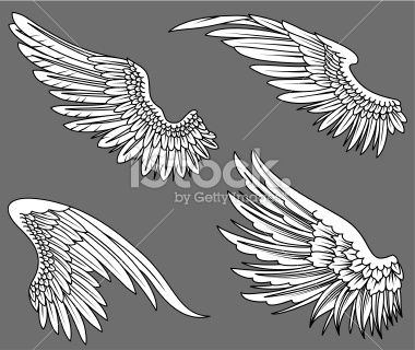 Ailes de poulet recherche and illustrations d 39 art on - Ailes d ange dessin ...