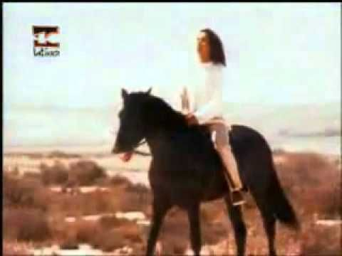 Donato Y Estefano Las Puertas Del Cielo Videos Musicales Oficial Videoclip