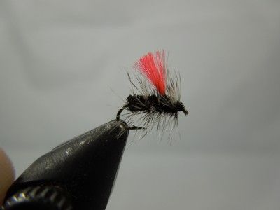Bighorn - Hi Vis Griffith's Gnat