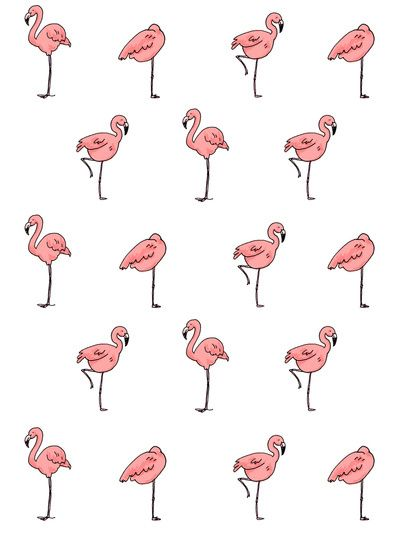 flamingo pattern: