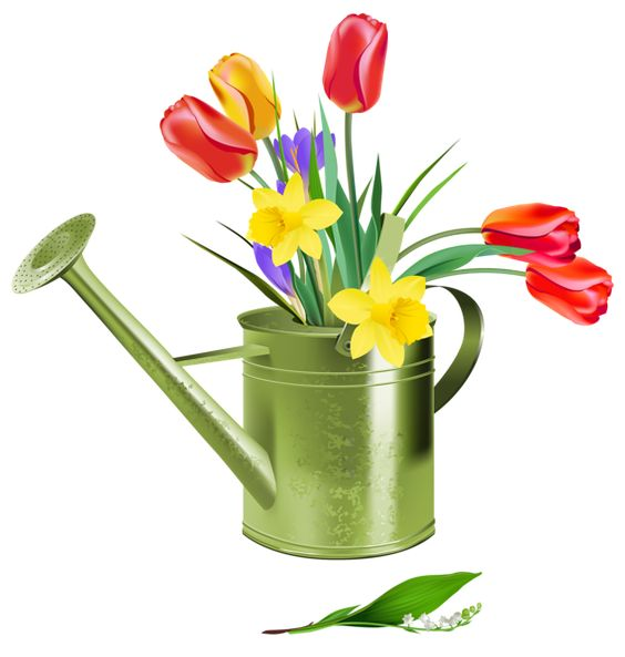 Green Watering Can with Spring Flowers PNG Clipart | Products I Love ...