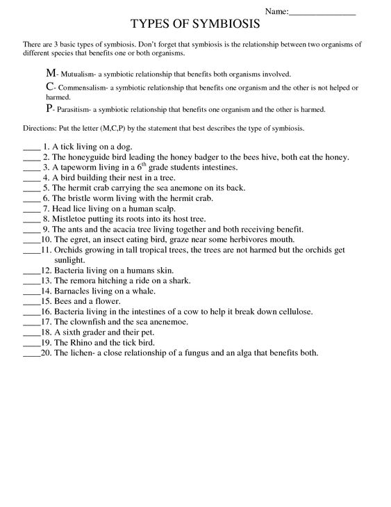Types Of Symbiosis Worksheet carolinabeachsurfreport – Planet Earth Shallow Seas Worksheet