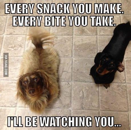 Every bite you take...