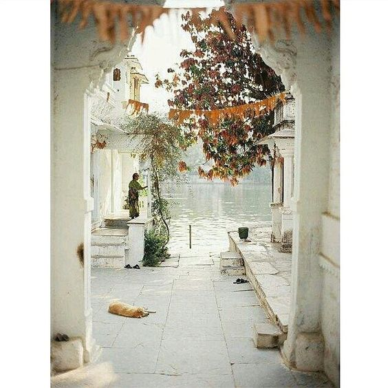 FOLLOW SOMEWHERE I WOULD LIKE TO GO @somewhereiwouldliketogo #Udaipur #India #rajasthan #somewhereiwouldliketolive