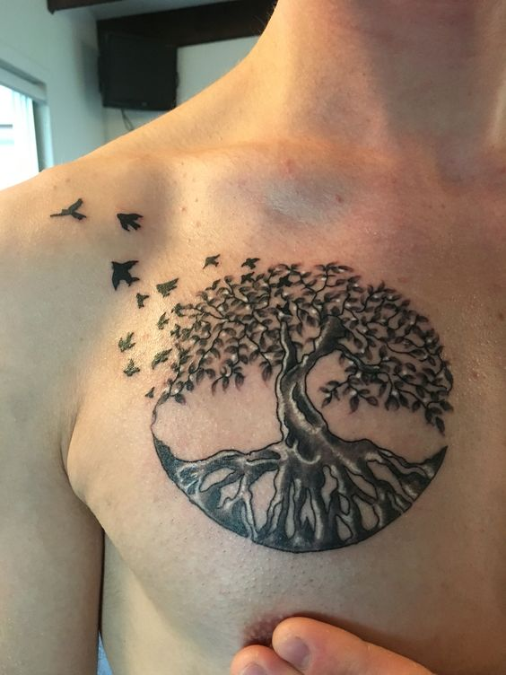Tree Of Life Tattoo Men: Pinterest • The World's Catalog Of Ideas