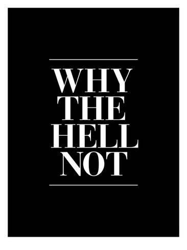 Giclee Print: Why The Hell Not by Brett Wilson : 24x18in
