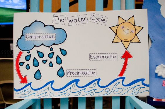 ... Water Cycle besides 3rd Grade Fossil Project. on fifth grade water